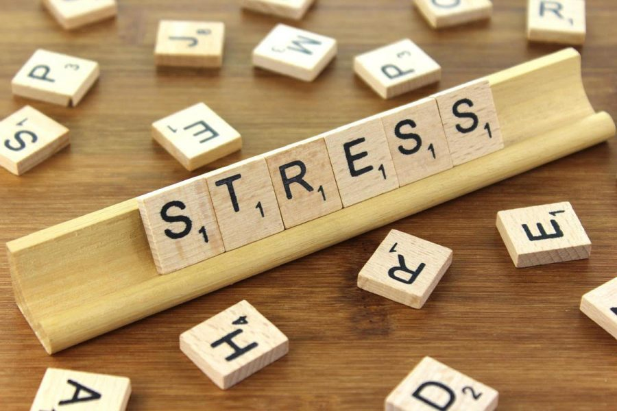 Stressed? Same Here, But It Is Manageable