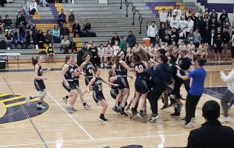 Girls' Basketball Brings Home District Championship