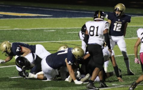 Bulldogs Keep Unbeaten Streak Alive at Homecoming