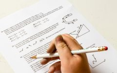 Standardized Tests: Are They More Harmful Than Helpful?