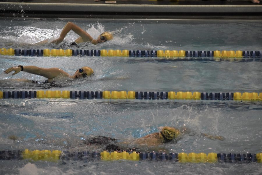 Girls Swim and Dive Win Against Tecumseh to Take Control of the SEC White Division